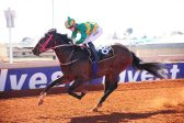 Cold will warm up Kimberley punters
