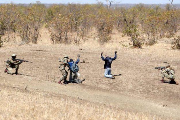 The anti-poaching tram apprehends the 'poachers