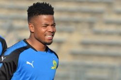 Lebese is free to leave Sundowns – Pitso