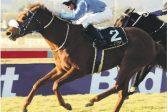 Bin Suroor aims for sixth Cape Verdi with Asoof