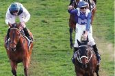 Candy's Mt Augustus to hit the heights at Goodwood