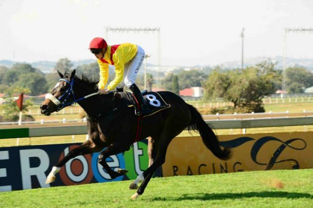 Piere Strydom rates Only To Win in Race 5 as his best bet on today's Turffontein card.