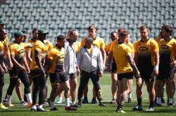 The Big Debate: Will the Springboks spring a surprise?