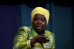 NDZ slams Johann Rupert over his 'theft' remarks on economic transformation