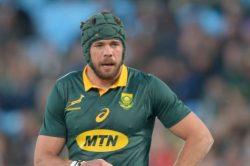 Springboks won't have their captain back till November