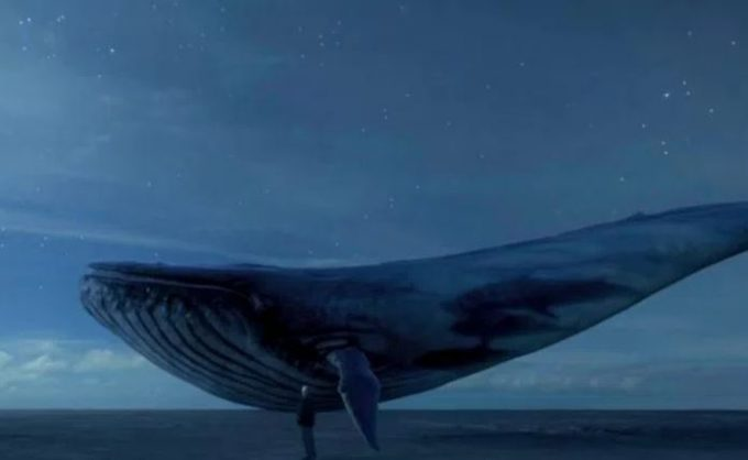 Blue Whale suicide game hits Joburg