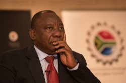 What Ramaphosa must do to increase his chances of winning, according to Malema