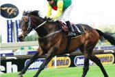Raiding trainers set sights on Algoa Cup