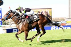 Jury out on Vaal draw bias