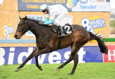 PICK 6 BANKER. Piere Strydom has made Pilgrim's Progress, who runs i9n Race 4 at Turffontein today, a banker in all bets. Picture: JC Photographics