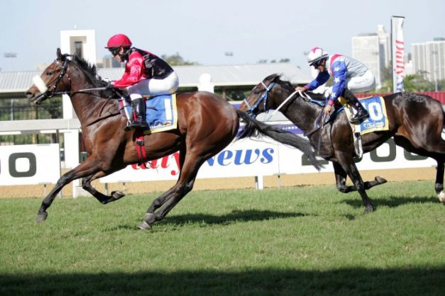READY TO WIN. Afrikaburn ran a decent race last time and looks to be a betting proposition in Race 4 at Fairview today.
