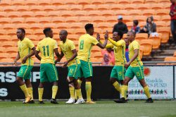 Bafana allow us to dream once again