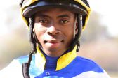 Work riders show their mettle