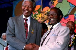 Youth Day is for reflecting on contributions of past youth to democracy – ANC