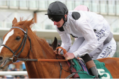 Top Tug will steer supporters straight in Leicester handicap
