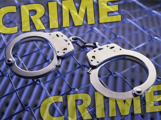 Police nab three in Eastern Cape with illegal guns and bullets