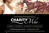 Peermont Emperors Palace Charity Mile: Charities set to win big