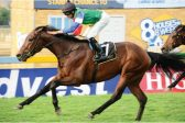 Look to Crazy Vision for value at the Vaal