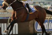 Last Winter to be aimed at Grade 2 Premier Trophy