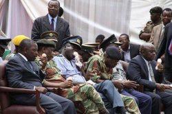 GALLERY: Thou shalt enjoy Grace Mugabe's 'ice-cream of the nation'