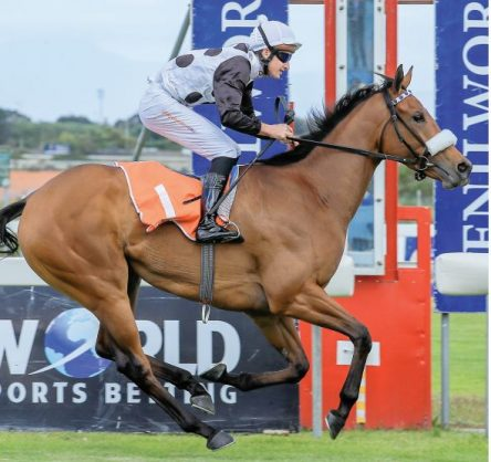 """SPECIAL. Snowdance (Bernard Fayd'Herbe) waltzes away with the R1-million World Sports Betting Fillies Guineas (Grade 1) over 1600m at Kenilworth on Saturday. Her trainer Justin Snaith said, """"She's been special since Day 1."""" PHOTO: Liesl King."""