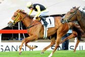 De Kock fillies flying in the Cape