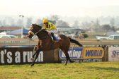 Top jockeys leap aboard