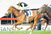 De Kock has strong hand with grey, two fillies