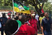 ANC, EFF united in protest against 'racist' Hoërskool Overvaal in Gauteng