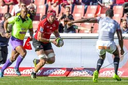Five players with a point to prove in Super Rugby this year