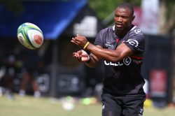 Drooling Sharks 'blown away' by 'great' Makazole Mapimpi