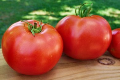 10 reasons you should be eating tomatoes