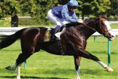 Talismanic to win in Dubai