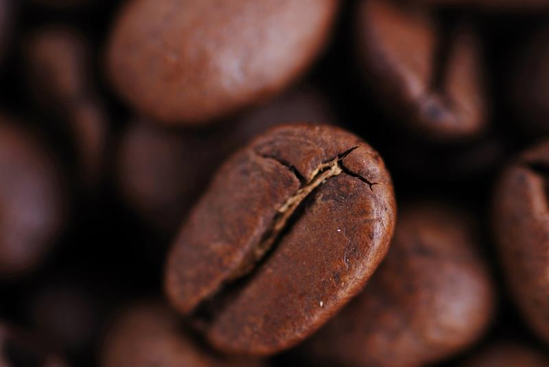 effect of coffee bean prices on To achieve this, the research will involve an examination of the coffee industry, major sources of coffee, how prices are determined and factors that drive the process in addition, the effect of price increases and how it affects starbucks and its consumers will be examined.