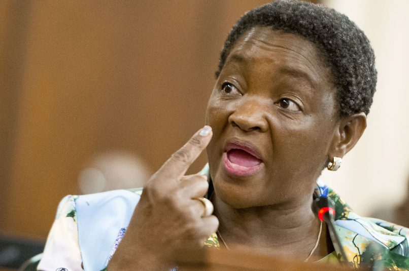 Newly appointed minister of women Bathabile Dlamini. Picture: Gallo Images / Rapport / Conrad Bornman