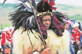 IFP accuses ANC of 'hatching plans' to take Zulu king's land