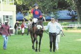Love of horses has taken Lyle Hewitson to the top