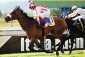 Snaith and Jo's Bond set their sights on KZN feature double