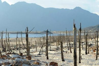 Cape Town dam levels down to 21.9 percent