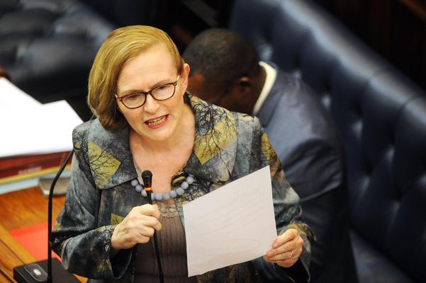 The 'universally targeted white male' is a 'scapegoat' – Zille