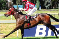 Empress Club Stakes looks a real thriller