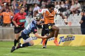 4 things the Cheetahs have done right in their first Pro14 campaign