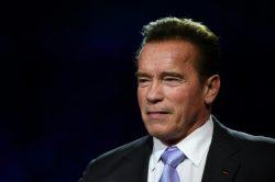 WATCH: Arnold Schwarzenegger kicked in the back in Sandton