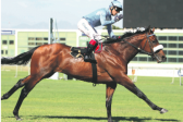 Snaith horses dominate
