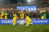 Bafana rout Botswana in Cosafa Cup Plate final