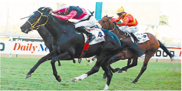 STAR PERFORMANCE. Surcharge, ridden by Gunter Wrogemann, runs on strongly to win the Grade 1 Daily News 2000 at Greyville on Saturday. Picture: Gold Circle