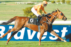 Fayd'Herbe factor to tell at wet Kenilworth