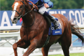 Hawkbill tipped to swoop on Prince Of Wales's at Ascot