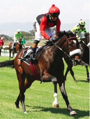 WINNING COMEBACK. Anton Marcus can have a winner on the day he returns from injury when he rides It's My Turn in the Grade 3 Track And Ball Derby over 2400m at Scottsville tomorrow.