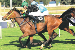 Zulu Dawn and impi to put rivals to the spear